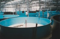 Tanks, Sectional Construction, with circular, flat bottom 33900 litres